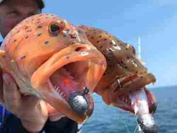 ​Our Top 5 lures for fishing on the Cobourg Peninsula